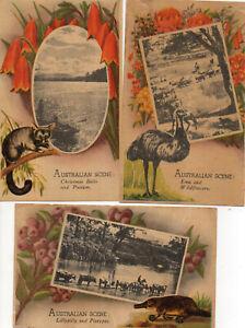Australia Vintage 3 X Australian Scenes