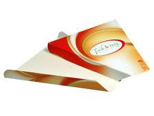 250 Pizza Slice Box Pizzakarton dreieckig für Pizzastück Neutralmotiv (333306)