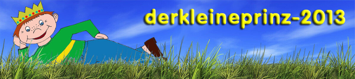 derkleineprinz-2013