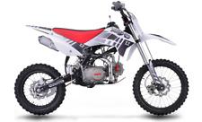Pit Bike Kayo TT 125  2020
