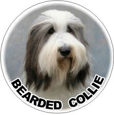 2 Bearded Collie Car Stickers Designed By Starprint
