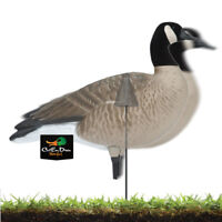AVERY GHG GREENHEAD GEAR REALMOTION REAL MOTION KIT FB DUCK GOOSE DECOYS 6 PACK