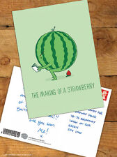 Brainbox Candy 'Making A Strawberry' Postcard Funny Comedy Cute Humour Novelty