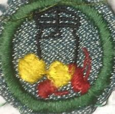 1947 Girl Scout SG Badge FOODS Canner White Backstich