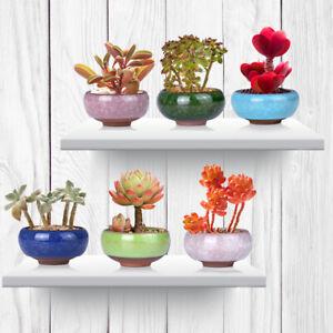 Ceramic Flower Pot Lot Mini Succulent Pot Plant Bonsai Home Garden Decor 6Pcs 6