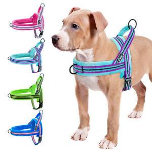 No Pull Quick Fit Front Leading Stripe Dog Harness Reflective Plush Lined XS-L