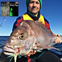 4x Snapper Rigs Tied Paternoster Rig Winter Reds 80lb Leader Circle Hook