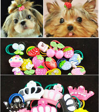 5x Cute Mini Crown Fruit Mixed Pet Dog Grooming Accessories Hair Rubber Band