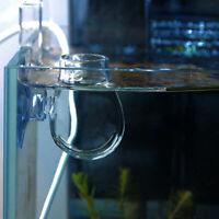 2019 Crystal Glass Pot Plant Cup Holder Red Shrimp Tank Aquarium Fish D9I3