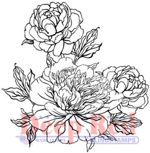 Deep Red Stamps Carnation Blooms Rubber Cling Stamp