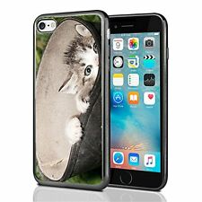 Curious Kitten Peek A Boo For Iphone 7 (2016) & Iphone 8 (2017) Case Cover