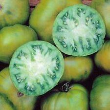 Ungarische Tomatensamen, Immergrün ,seltene Form.organische Tomaten, Sämereien