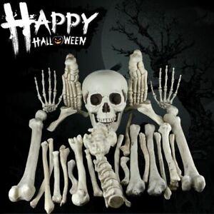 28pcs Human Bones Skull Skeleton Scary Pirate Party Halloween Decoration Props
