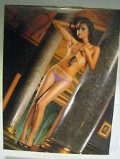 Baci Lingerie Nude/Tan Sheer Pantyhose ONE SIZE #80