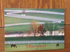 Postcard Unused Maryland Thoroughbred Horse Farms
