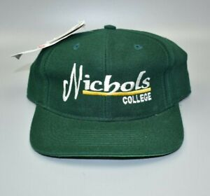 Nichols College Bison Vintage 90s The Game Fitted Cap Hat - Size: 7 1/4