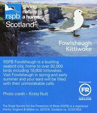 RSPB Pin Badge | Fowlsheugh kittiwake (01450)