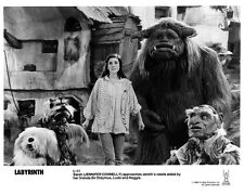 Labyrinth movie photo : Jennifer Connelly : reproduction movie photo print # 11