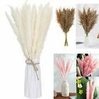 30Pcs/Set Natural Dried Pampas Grass Reed Flower Wedding Bouquet Home Decors US