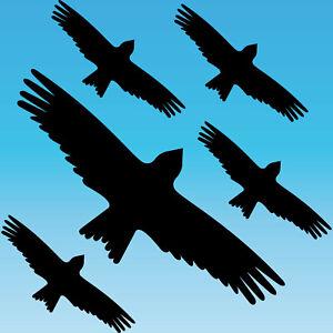 Warning Bird Sticker Set M Black Milan Bird Shock Window Protection Deco Foil