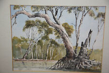 VINTAGE ART signed water colour gum tree FRAMED BEHIND GLASS 47.5 x 41 cm