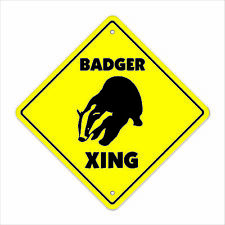 Badger Crossing Decal Zone Xing Tall teeth wisconsin football rodent