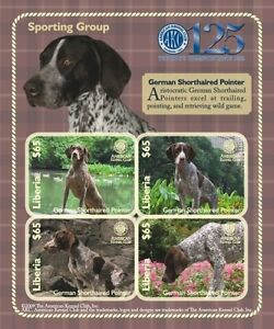 Liberia 2009 - Dogs of American Kennel Club-Sporting Group German Sheet of 4 MNH