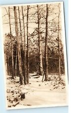 *Unknown Location Snowy Winter Path Bare Trees in Forest Real Photo Postcard C14