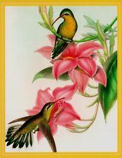 Humming Birds John Gould (1804-1881) Chrysobronchus Virescens  Blank Note Card