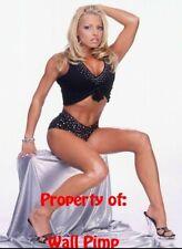 TRISH STRATUS WWE WCW WWF DIVAS Poster Print 24x36 WALL Photo 2