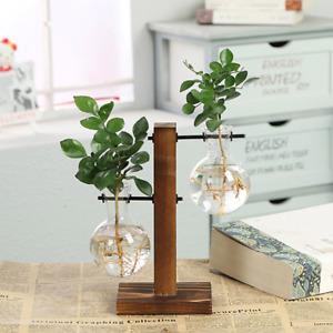 Terrarium Hydroponic Plant Vases Vintage Flower Pot Transparent Vase Wooden