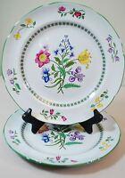 "2X Spode England Summer Palace 10 1/4"" Dinner Plates - Botanical Flowers"