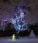 CHRISTMAS LIGHTS DECORATIONS picture photo virtual postcard #050c Helena Baru