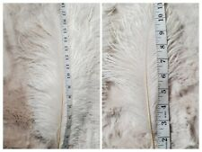 Ostrich Feathers off white size 19
