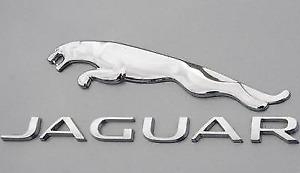 GENUINE Jaguar  Engine Piston Ring Set for 8 pistons 2004 -2010 4.2 liter V8 OEM