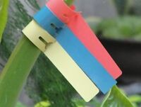 "60PCS Wrap around tree tags 8"" x 3/4"" white vinyl plastic nursery plant label"