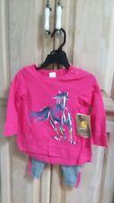 Infant Girl's Carhartt Size 24 months Pink Running Horse Set - Cg9677