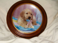 """Vintage Hamilton Collector Plates """" Teething Time!"""" """"Golden Puppy Portraits"""""""