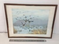 Maynard Reece Wildlife Ducks Vintage Nature 16x12 Framed Art Print