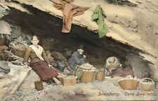 cornwall, Downderry, Cave Dwellers (1910s)