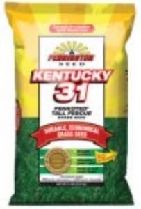 Pennington 100516055 Kentucky 31 Tall Fescue Grass Seed, 25 LB