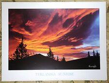 Teklanika Sunrise Rare Alaska Poster Print Kennan Ward 1991 Photograph 32x24