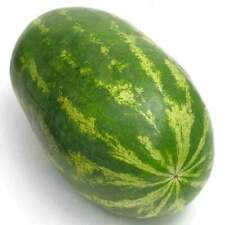 30 x Giant Watermelon Seeds Delicious Sweet Home Decoration Fruit Seeds NON-GMO