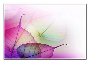 Autumn Leaf Wall Art for Home and Office Single Panel Wall Art Framed
