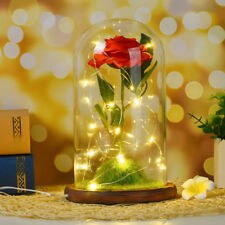 Beauty and The Beast Red Rose Glass Lamp Dome Festivel Led Lighted Decor Lamp