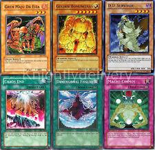 Amnael Complete Deck - Golden Homunculus - Macro Cosmos - 40 Cards - Yugioh