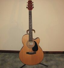 Jasmine by Takamine S34C Acoustic Guitar