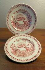 TWO Antique Child's Aesthetic Transferware Plates Allerton's Water Hen Birds