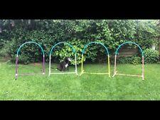 Jessejump Hoopers Agility Hoop