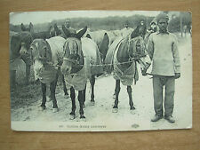 VINTAGE POSTCARD INDIAN ARMY CONVEYOR WITH MULES - WWI 1915